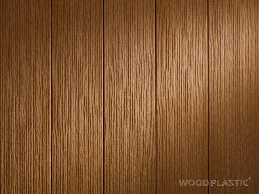 FOREST Cedar